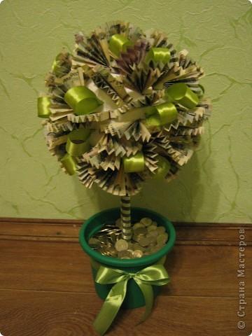 Денежное дерево - подарок на свадьбу фото 1