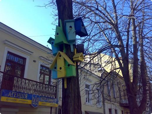 Наш красавец - Одесский  академический   театр оперы и балета ) очень знаменит!!!! фото 20
