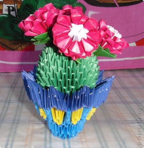 Цветущий кактус. фото 2