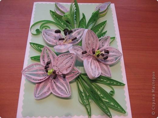 лилии- повторюшки+сладкий букет фото 1