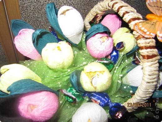 сладкие тюльпанчики фото 3