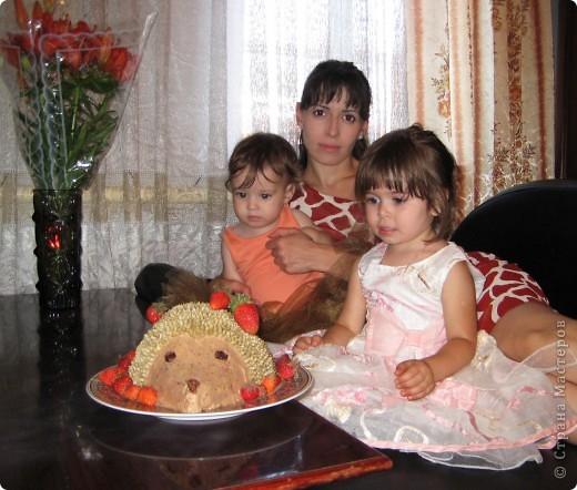 Очень хотелось удивить свою 3-х летнюю дочь на день ее рождения. как-то я тренировалась украшать торт кремом...увы это не мое и тут я нашла в интернете для себя как мне показалось очень легкий способ оформления и очень детским мне показался этот тортик. очень быстро испекла коржи, вырезала форму.....но самое страшное ждало меня впереди, это втыкание семечек, так как я его делала второй раз, рука была не набита и на все это дело ушло где-то 5 часов, оформлять закончила в 3 часа ночи, но самой ценной наградой было для меня, когда утром я увидела огромнейшие глаза моей крошки, ее счастью не было предела  фото 3