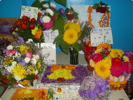 В нашей школе проходила выставка цветов посвященная 20 годам независимости Украины. Первую работу на ваш суд выношу моей дочки Насти (конечно под маминым руководством). фото 8