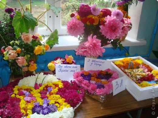 В нашей школе проходила выставка цветов посвященная 20 годам независимости Украины. Первую работу на ваш суд выношу моей дочки Насти (конечно под маминым руководством). фото 10