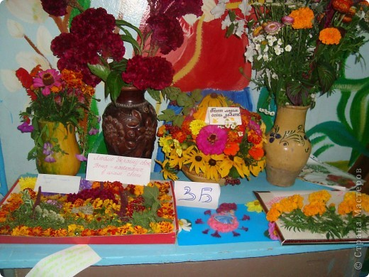 В нашей школе проходила выставка цветов посвященная 20 годам независимости Украины. Первую работу на ваш суд выношу моей дочки Насти (конечно под маминым руководством). фото 11