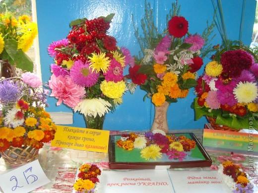 В нашей школе проходила выставка цветов посвященная 20 годам независимости Украины. Первую работу на ваш суд выношу моей дочки Насти (конечно под маминым руководством). фото 14