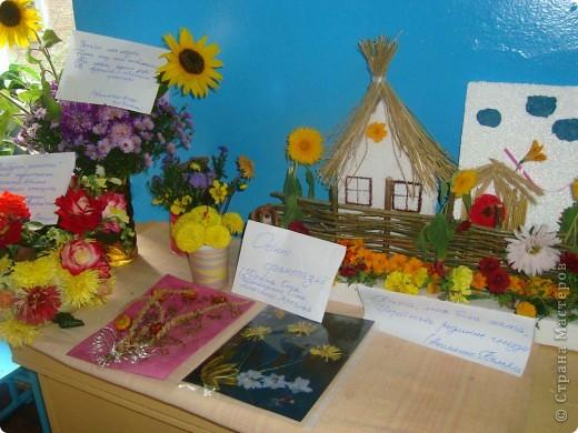 В нашей школе проходила выставка цветов посвященная 20 годам независимости Украины. Первую работу на ваш суд выношу моей дочки Насти (конечно под маминым руководством). фото 15