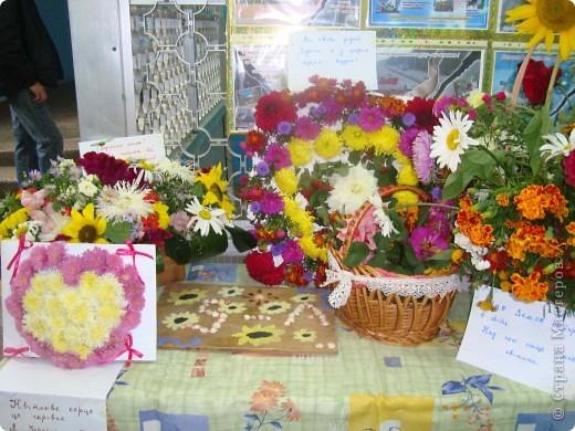 В нашей школе проходила выставка цветов посвященная 20 годам независимости Украины. Первую работу на ваш суд выношу моей дочки Насти (конечно под маминым руководством). фото 16
