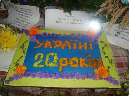 В нашей школе проходила выставка цветов посвященная 20 годам независимости Украины. Первую работу на ваш суд выношу моей дочки Насти (конечно под маминым руководством). фото 18