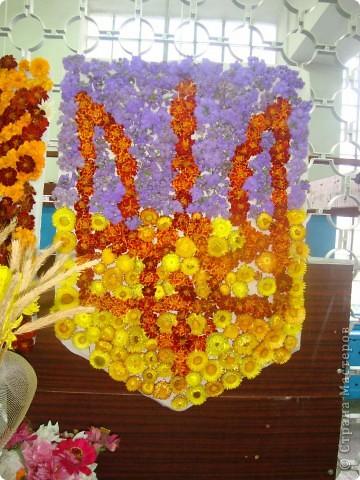 В нашей школе проходила выставка цветов посвященная 20 годам независимости Украины. Первую работу на ваш суд выношу моей дочки Насти (конечно под маминым руководством). фото 21