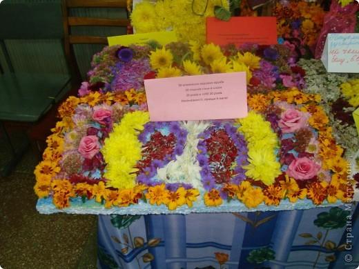 В нашей школе проходила выставка цветов посвященная 20 годам независимости Украины. Первую работу на ваш суд выношу моей дочки Насти (конечно под маминым руководством). фото 23