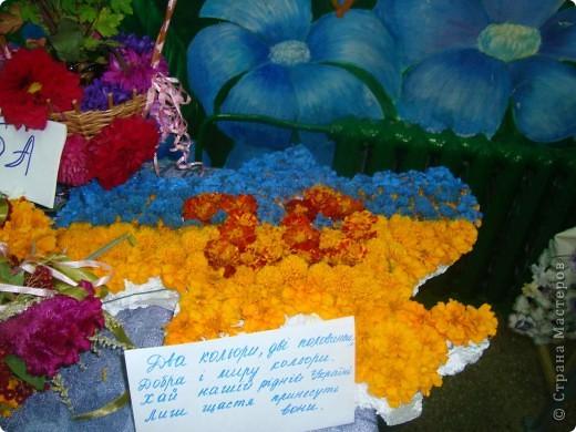 В нашей школе проходила выставка цветов посвященная 20 годам независимости Украины. Первую работу на ваш суд выношу моей дочки Насти (конечно под маминым руководством). фото 28