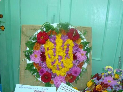 В нашей школе проходила выставка цветов посвященная 20 годам независимости Украины. Первую работу на ваш суд выношу моей дочки Насти (конечно под маминым руководством). фото 31