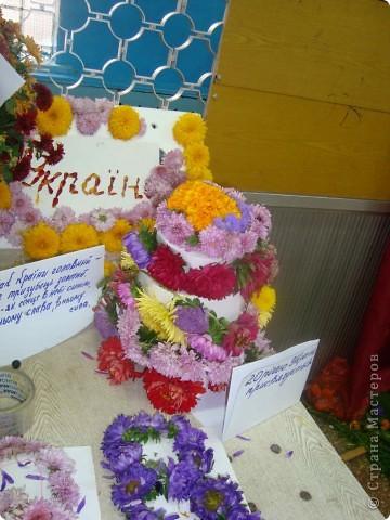 В нашей школе проходила выставка цветов посвященная 20 годам независимости Украины. Первую работу на ваш суд выношу моей дочки Насти (конечно под маминым руководством). фото 35