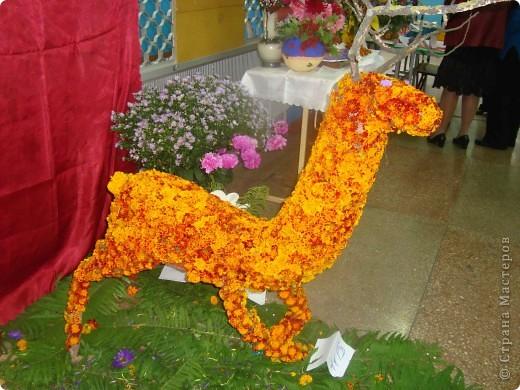 В нашей школе проходила выставка цветов посвященная 20 годам независимости Украины. Первую работу на ваш суд выношу моей дочки Насти (конечно под маминым руководством). фото 41