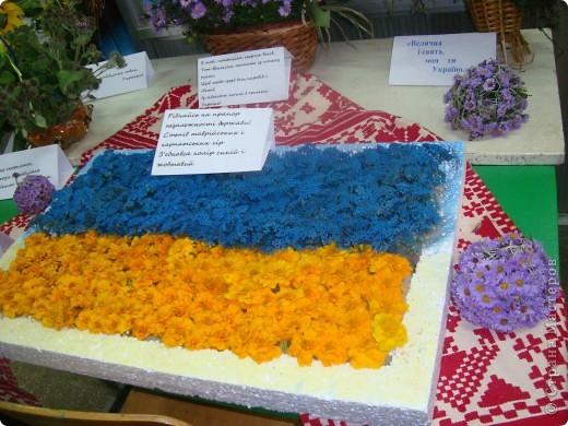 В нашей школе проходила выставка цветов посвященная 20 годам независимости Украины. Первую работу на ваш суд выношу моей дочки Насти (конечно под маминым руководством). фото 38