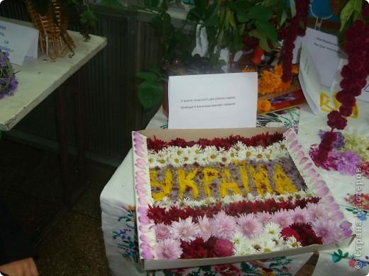 В нашей школе проходила выставка цветов посвященная 20 годам независимости Украины. Первую работу на ваш суд выношу моей дочки Насти (конечно под маминым руководством). фото 39