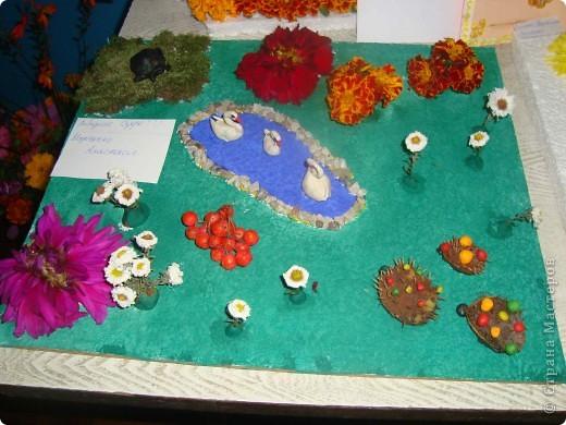 В нашей школе проходила выставка цветов посвященная 20 годам независимости Украины. Первую работу на ваш суд выношу моей дочки Насти (конечно под маминым руководством). фото 6