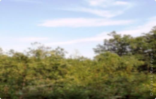 Картина панно рисунок Праздник осени Квиллинг Золотая осень Квиллинг Бумага Бумажные полосы фото 7