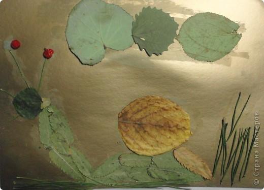 Решила я предложить своим четвероклассникам сделать аппликацию из листьев. Вот что у них получилось. Выкладываю только самые оригинальные работы. Рыбки, бабочки и букеты остались на выставке в классе.  Тарасов Андрей сделал березку из нарезанных листьев. фото 4