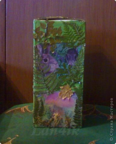 Захотелось сделать что-то для сухих грибов. Картонная коробка, распечатки, разная травка из леса и мох, лак. фото 2