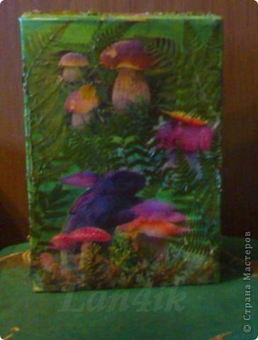 Захотелось сделать что-то для сухих грибов. Картонная коробка, распечатки, разная травка из леса и мох, лак. фото 3