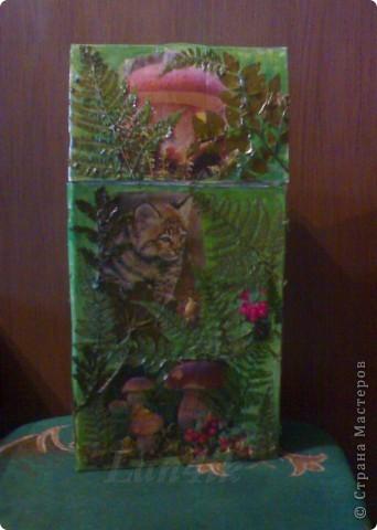 Захотелось сделать что-то для сухих грибов. Картонная коробка, распечатки, разная травка из леса и мох, лак. фото 1