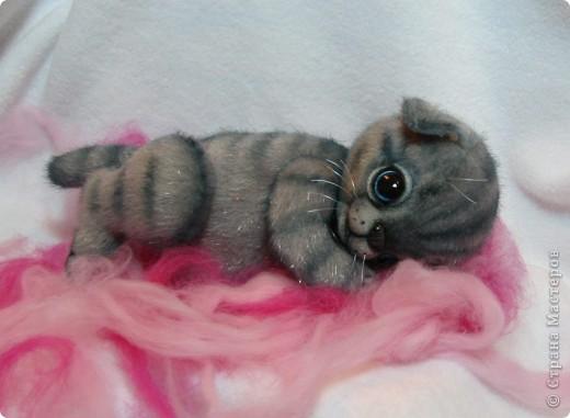 Мило мурлыкающая голубоглазая малышка, так нуждается в тепле и заботе! Она совсем еще кроха)) фото 3