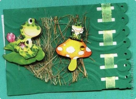 Небольшое царство лягушек-квакушек. Приглашаем КРЕДИТОРОВ к выбору и ШМыГу. №1 фото 1