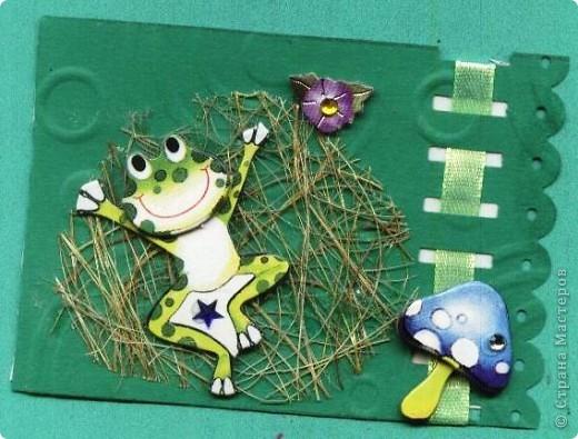 Небольшое царство лягушек-квакушек. Приглашаем КРЕДИТОРОВ к выбору и ШМыГу. №1 фото 3