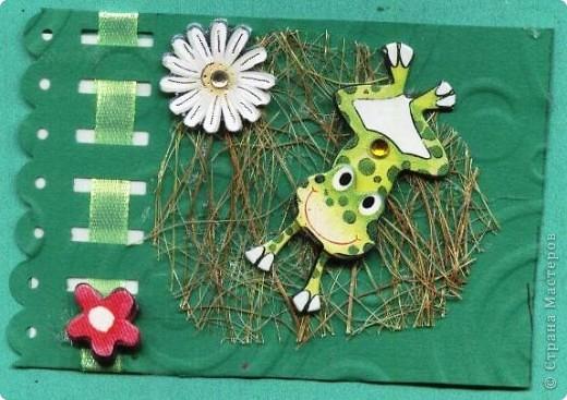 Небольшое царство лягушек-квакушек. Приглашаем КРЕДИТОРОВ к выбору и ШМыГу. №1 фото 5