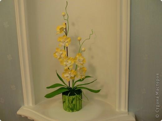 """Сегодня хочу показать свою работу в технике """" Кристальные цветы""""  Орхидея """"бабочка"""". фото 1"""
