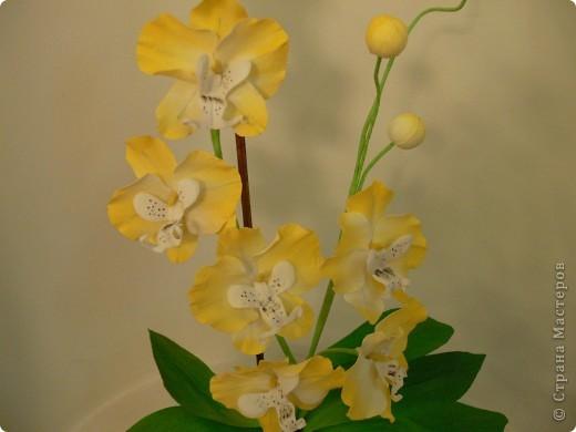 """Сегодня хочу показать свою работу в технике """" Кристальные цветы""""  Орхидея """"бабочка"""". фото 4"""