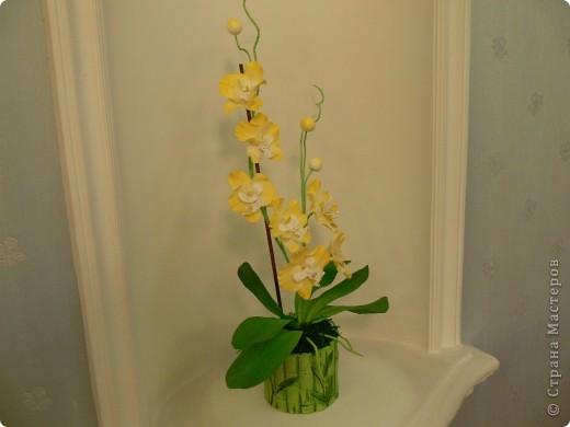 """Сегодня хочу показать свою работу в технике """" Кристальные цветы""""  Орхидея """"бабочка"""". фото 5"""