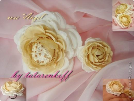 роза Николь фото 7