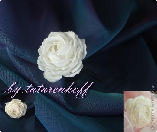 роза Николь фото 8