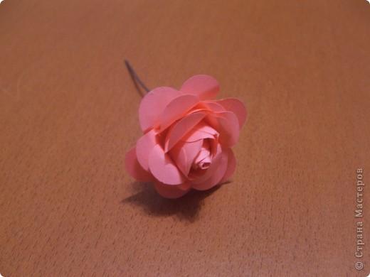 Здравствуйте дорогие жители СМ!!! Сегодня хочу поделиться с вами своим открытием!!! Мы будем с вами мастерить розочку как на фото!!! Розочка из бумаги своими руками-это так просто!!! Вдохновила меня на создание этого цветка мамина большая брошка-роза!!! Вот так порой приходит вдохновение!!!)))))  фото 12