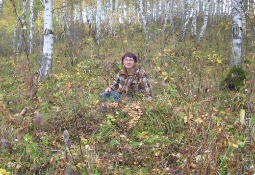 Тихой охотой назвал С. Т. Аксаков сбор грибов. Настоящий грибник, как и охотник, встречает солнце в лесу уже с трофеями. Время, проведенное в увлекательной охоте за грибами,- бодрая зарядка, познание удивительных грибных тайн. фото 17