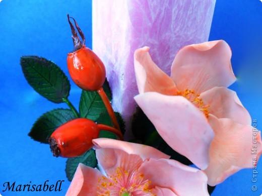 Веточка с нежными цветочками и плодами шиповника.  фото 15