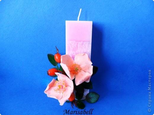 Веточка с нежными цветочками и плодами шиповника.  фото 12