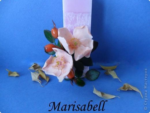 Веточка с нежными цветочками и плодами шиповника.  фото 18