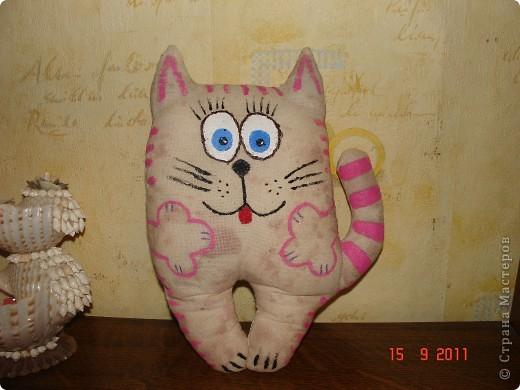 клубничный котик