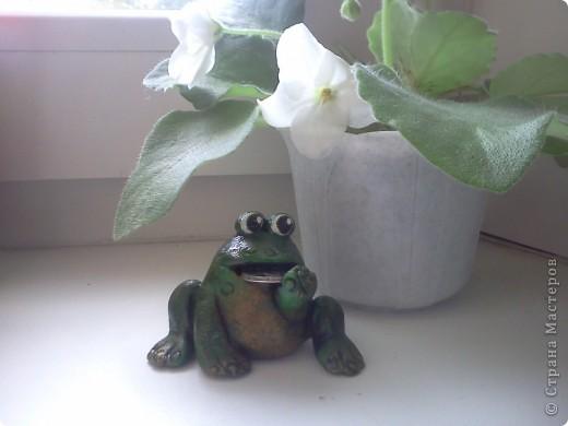 Сегодня я к Вам в гости пожаловавала со своей лягушечкой. Делала ее в подарок для одного хорошего человечка. Хочу сказать БОЛЬШОЕ-ПРЕБОЛЬШОЕ СПАСИБО Светлане Иванцовой за ее идею (http://stranamasterov.ru/node/191793) и ссылочку на МК Светлячка и К по созданию этого чуда. фото 1