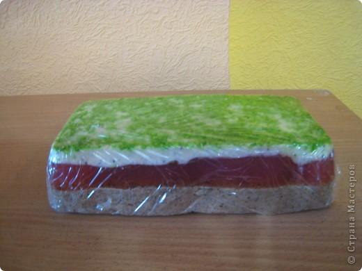 верхний слой (зеленый) это кокосовая стружака фото 2