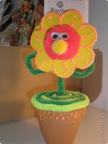 Вот такой весёлый цветочек поселился у меня на столе