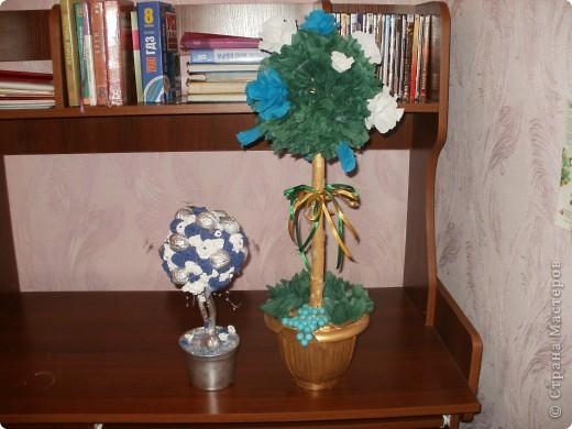 Купила новую гофробумагу голубого цвета и сразу рашила сделать розовое дерево! Работа шла легко и быстро,поэтому через 6 часов результат был налицо! фото 6