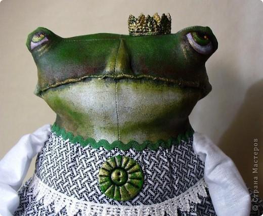 Лягушка-Царевна в ожидании прынца. фото 1
