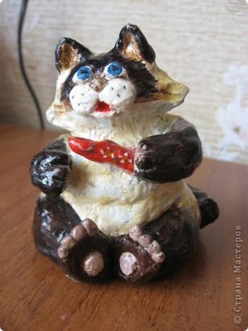Подарок гастроэнтерологу. Мои Коты фото 5