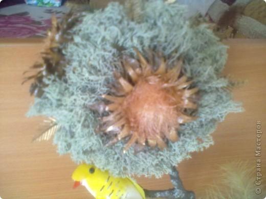 Осень- это пора, когда надо собирать природные материалы: шишечки, веточки, цветочки сушить и т.п. вот и я набрала всего кучу и получилось у меня такое дерево! фото 2