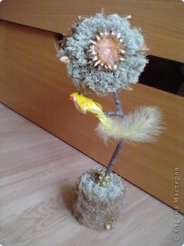 Осень- это пора, когда надо собирать природные материалы: шишечки, веточки, цветочки сушить и т.п. вот и я набрала всего кучу и получилось у меня такое дерево! фото 1